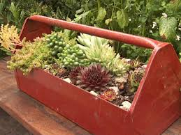 Large Succulent Planter 13 Unusual And Upcycled Container Gardens Diy