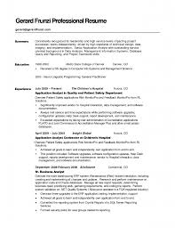 exles of resume for application resume summary sles exle template