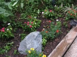 landscaping gardening ideas for small yards with natural plants