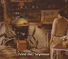 Feed Me Seymour Meme - feed me seymour gifs tenor