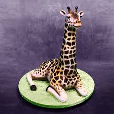 giraffe cake how the 3d giraffe cake was made yeners way