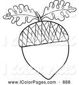 royalty free nut stock coloring page designs