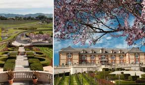 domaine carneros about chateau between the best sparkling wine houses in napa valley