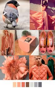 2017 fashion color 222 best fall winter 2016 2017 images on pinterest color trends