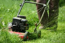 Different Types Of Garden - what are the different types of garden power tools
