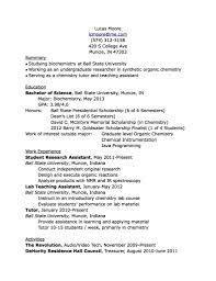 Best Skills For A Resume by What To Put On Resume The Best Letter Sample