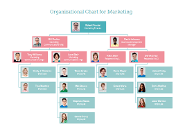 professional organizational chart templates for mac free to download