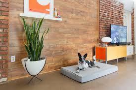 Modern Laminate Flooring Mid Century Modern