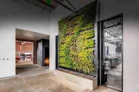 suite plants living plant walls for any space