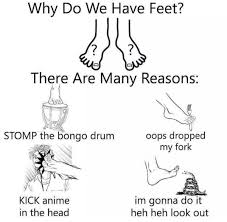 Meme Why - why do we have feet internet meme meme funny pictures lol pics