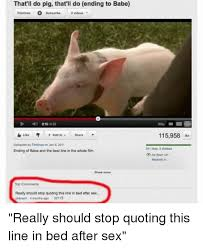 Funny Pig Memes - 25 best memes about thatll do pig thatll do thatll do pig