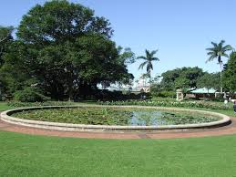 the most beautiful gardens and parks in durban