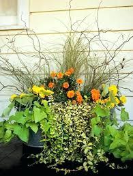 Design For Indoor Flowering Plants Ideas Pot Plant Garden Ideas Stylish Design For Indoor Flowering Plants