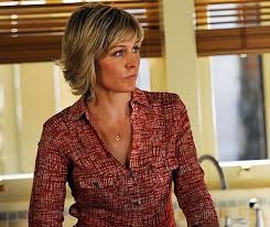 amy carlson hairstyles on blue bloods amy carlson photos and pictures tv guide