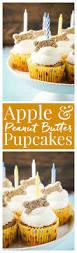 best 25 dog cupcake recipes ideas on pinterest dog birthday