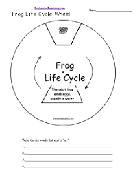 frogs enchantedlearning