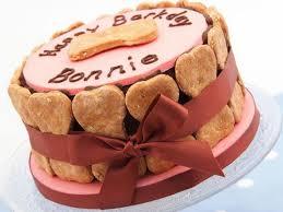 homemade cakes for dogs birthday birthday cakes pinterest