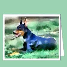8 best doberman pinscher images on dobermans doberman