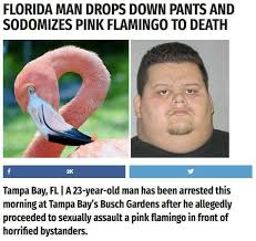 Jaw Drop Meme - that damn florida man meme by dragonix18 memedroid
