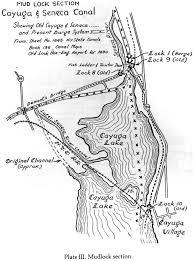 cayuga county springport ledyard aurelius union springs