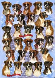 boxer dog xmas boxer dog christmas wrapping paper design by starprint amazon co