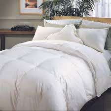 Hotel Collection Primaloft Comforter Down Alternative Comforters Shop The Best Deals For Nov 2017