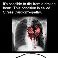 Broken Heart Meme - broken heart feels by fudge packer meme center