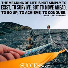 quote meaning business the meaning of life in 15 wise quotes success
