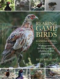 Backyard Pheasants Best 25 Raising Pheasants Ideas On Pinterest Bird Aviary Quail