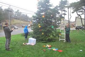 update new community christmas tree now in place news