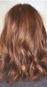 Caramel Hair Color With Honey Blonde Highlights 71 Best Hair Color Light Brown U0026 Caramel Images On Pinterest