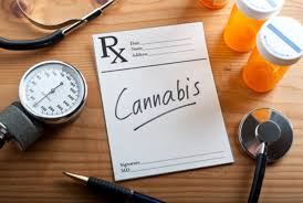 medical marijuana identification card program