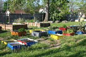 gardening picture urban gardening home