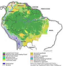 south america map rainforest map of the