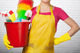 spring and fall cleaning u2013 velia cleaning services