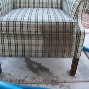 prestige carpet upholstery cleaning carpet cleaning 11230 e
