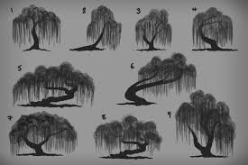 image result for willow tree drawing inspiration