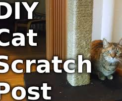 Modern Cat Scratching Post Make A Cat Scratching Post With Pictures
