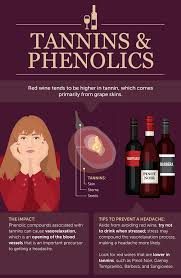 what causes red wine headaches