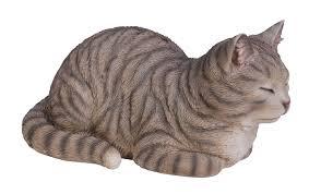 arts tabby dreaming cat resin ornament co uk garden