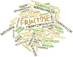 what is fructose malabsorption