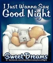 Good Nite Memes - 28 good night quotes funny10 thinking meme