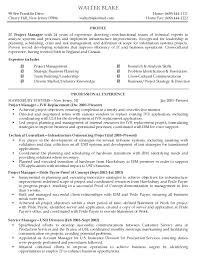 Program Manager Resume Objective It Manager Resume Examples Resume Example And Free Resume Maker