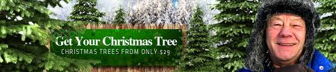 christmas tree sale christmas tree signs