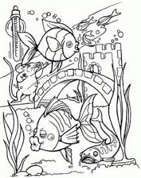 photo gallery fish coloring pages adults
