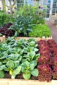 vegetable gardening gift ideas planter vegetable gardens patio