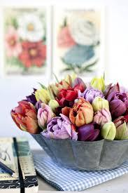67 best founders flowers images on pinterest flowers flower