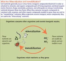 Diseases Caused By Protozoa In Plants - soil protozoa nrcs soils