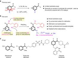 pd ii catalysed meta c u2013h functionalizations of benzoic acid