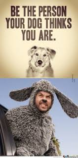 Wilfred Meme - i want a dog like wilfred by recyclebin meme center